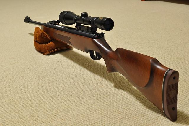 Preferred Pellet Gun - Page 2 - Survivalist Forum