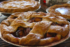 pie, meal, breakfast, pastry, baking, linzer torte, baked goods, produce, food, dish, cherry pie, cuisine,