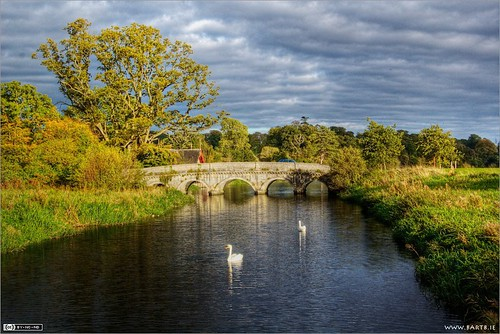 bridge ireland birds clouds river swans carton maynooth kildare cartonestate