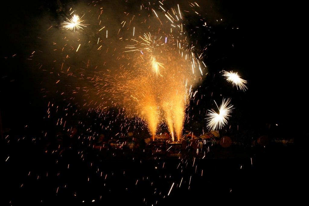 Backyard Fireworks : Shower of sparks  Backyard fireworks on Independence Day  By