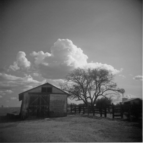Empire Ranch Holga  barn
