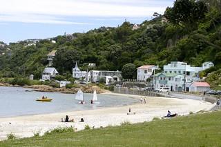 Image de Scorching Bay Beach près de Wellington. newzealand beach wellington scorchingbay