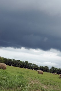 Hay Field with Storm Clouds