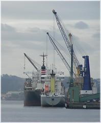 port, crane vessel (floating), vehicle, freight transport, ship, construction equipment, watercraft,