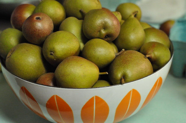bowl of Seckel pears