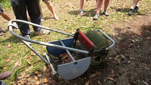 pecan picking machine