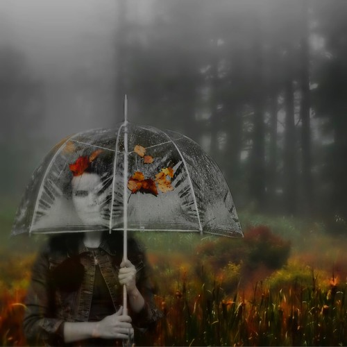 Photograph of girl under autumn umbrella