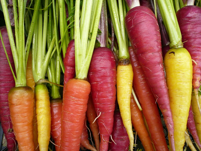 colorful carrots flickr photo