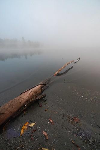 morning fog landscape nevergetsunrisephotosbecauseimnotamorningperson notsurewhyiwokeupbutitwasverypretty northcalaisvt