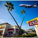 Animal style Fly Thru' by California CPA