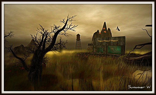 Halloween scenes - a gallery on Flickr