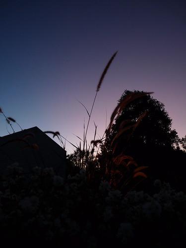 2009 october2009 reinalasol sunset sundown vista skyscape landscape sky dusk nature minimalist composition fave favorites favorite faves flickr