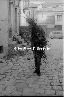 """Satriano di Lucania (PZ), 1975, Carnevale: """"u rumit""""."""