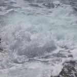 wave1-flickr
