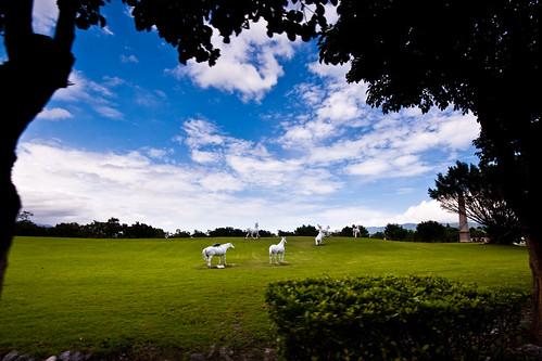 sky sculpture field grass clouds taiwan hualien whitehorse 花蓮 白馬 雕像 新光兆豐農場 馬上贏 馬上蠅
