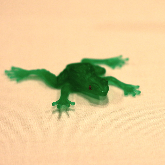 Little Green Rubber Frog Flickr Photo Sharing