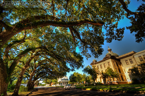 Why HDR Sucks - Live Oaks at Fort Bend County Courthouse