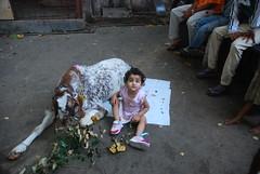 Marziya Shakir Was Born To Street Photography by firoze shakir photographerno1