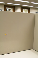 Gold star for the study carrels!