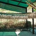 drying fish - bokkoms