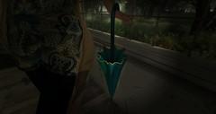 Spring Umbrellas - Petit Chat