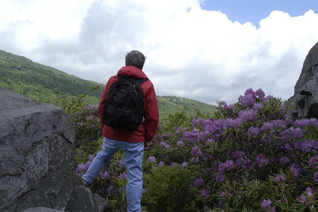 A hiker visits Grayson Highlands State Park