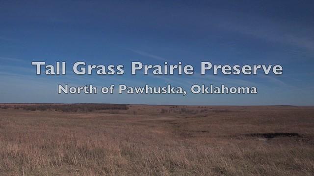 tallgrass prairie preserve buffalo roundup montage