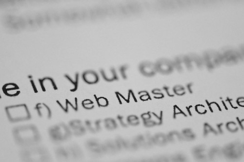 Are you a Web Master?