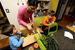 unpacking a weekly delivery of local organic produce