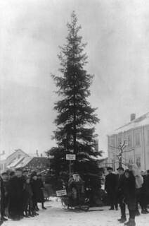 Byens juletræ (1921)