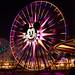 Disneyland August 2009 047