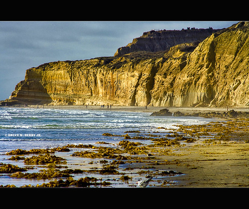 california people sunlight seaweed sandiego cliffs canon350d dri agar goldenlight digitalblending torreypinesstatebeach quantaray70300mm brucewberryjr darthbayne backonmybs budgetlens