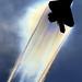 USAF-ACC F-22 Raptor by Steve Maciejewski