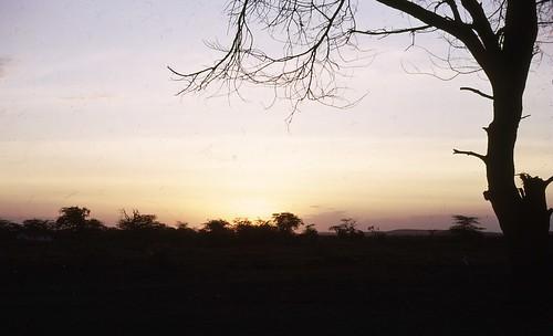 africa sunrise kenya amboseli