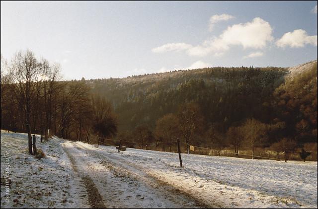 Wintermorgen (1)
