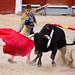 Corridas de toros - Chinchón 2009-13