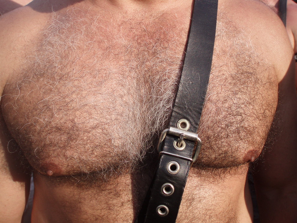 HELLA HAIRY MAN CHEST ! FOLSOM STREET FAIR 2009 ! ( safe photo )
