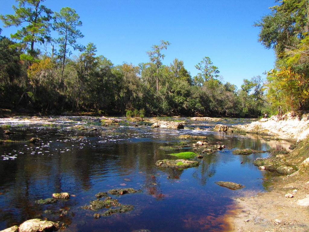Big Shoals from Florida Trail 3