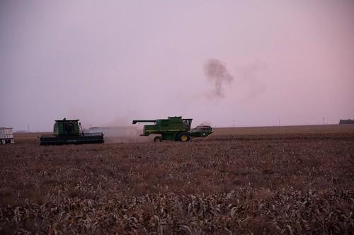 usa tractor nikon pheasant farm farming hunting harvest combine kansas copeland tice d90 sublette