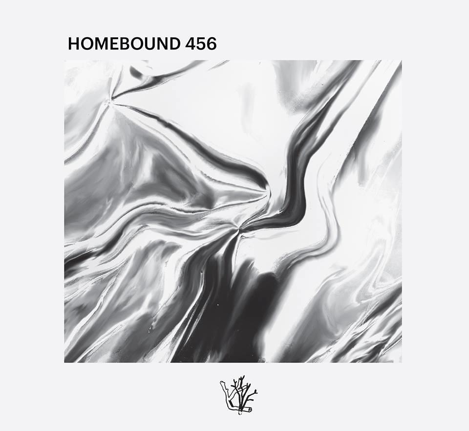 Capa Homebound 456