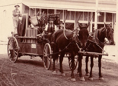 ox(0.0), vehicle(1.0), transport(1.0), pack animal(1.0), coachman(1.0), history(1.0), horse harness(1.0), horse and buggy(1.0), land vehicle(1.0), carriage(1.0), cart(1.0),