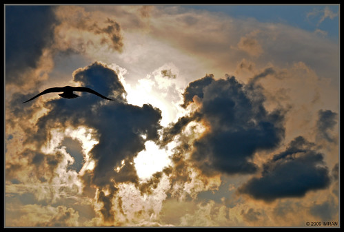 blue sunset red summer sky sun inspiration newyork hot bird beach nature birds silhouette yellow night clouds outdoors golden landscapes flying nikon marine framed longisland pastels summertime swirls dslr 2009 soe imran birdseyeview fireisland naturesfinest greatsouthbay imrananwar anawesomeshot atomicaward