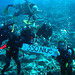 350 Niue underwater with Niue Dive