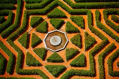 symmetry, soil, maze, labyrinth, green, circle,