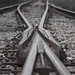 Small photo of Rail fork