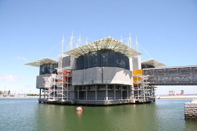 Oceanário de Lisboa. Lisbon aquarium