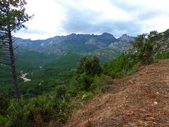 Depuis la piste de Punta Radichella : le ruisseau de Sainte-Lucie et la crête Quercitella-Samulaghja avec Punta di Bonifacio