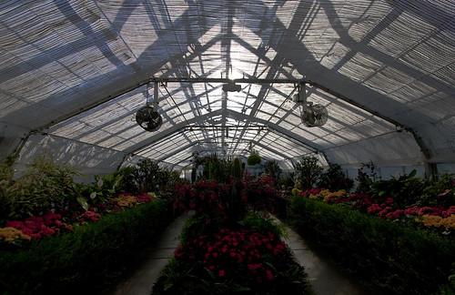 Manito Greenhouse