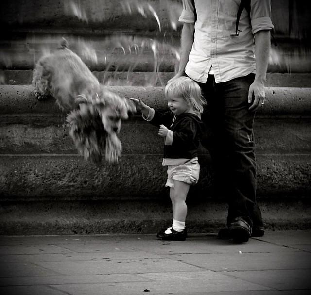 _ hey doggie ! _