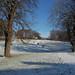 Snow in Phoenix Park